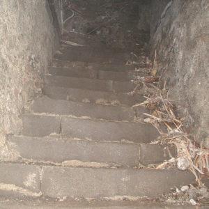 LeDuc Cave111204 06